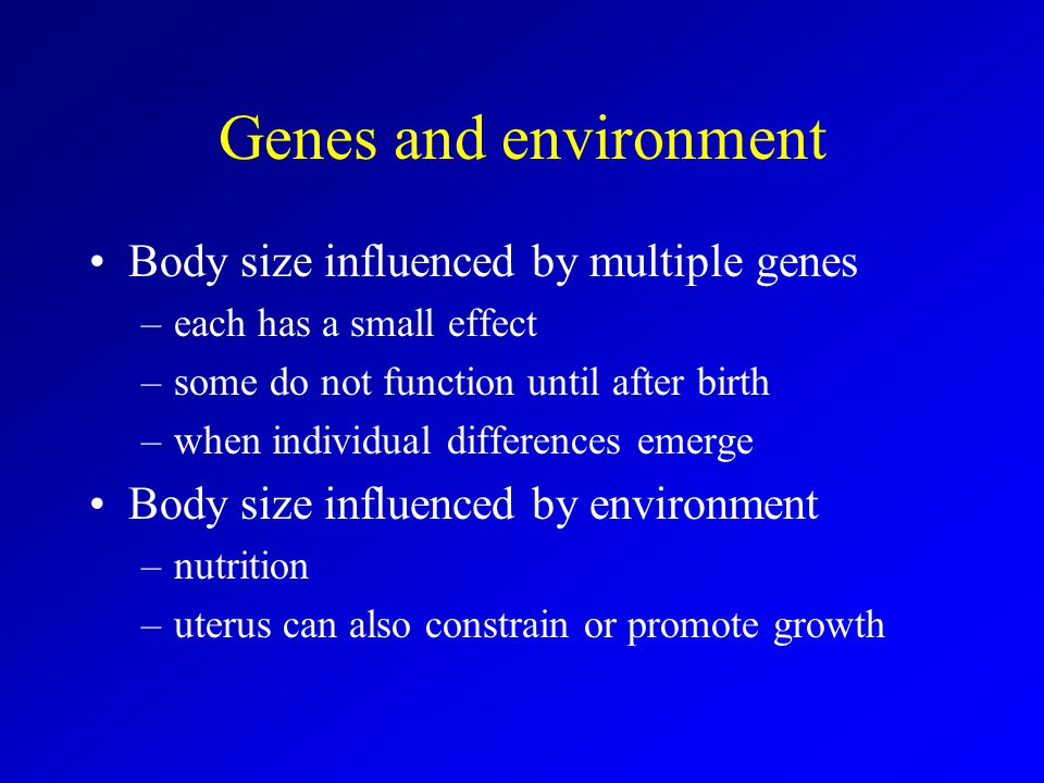 Genes and environment Body size influenced by multiple genes