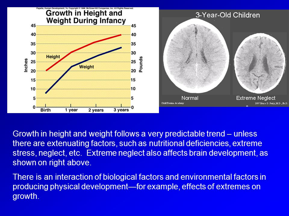 Growth in height and weight follows a very predictable trend – unless there are extenuating factors, such as nutritional deficiencies, extreme stress, neglect, etc. Extreme neglect also affects brain development, as shown on right above.
