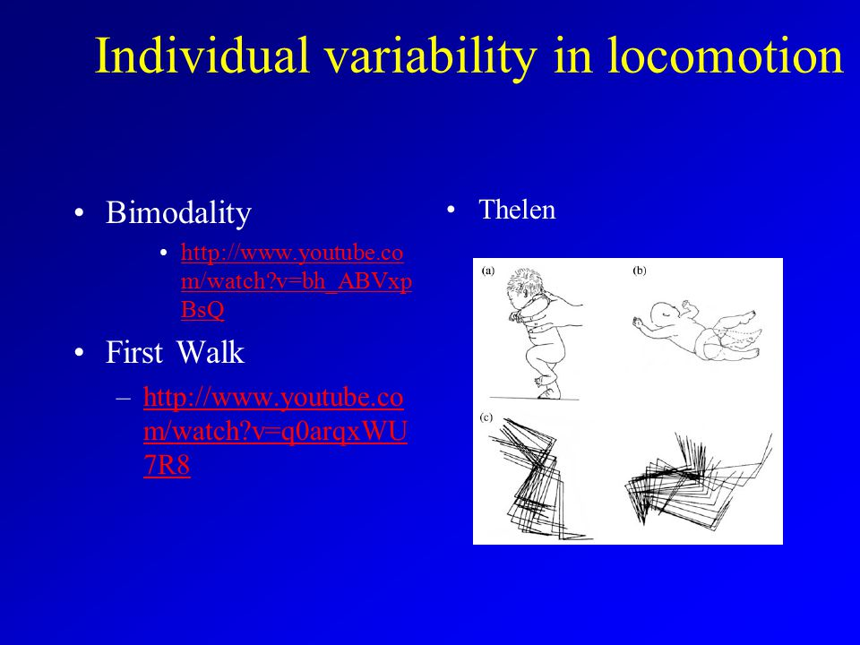 Individual variability in locomotion