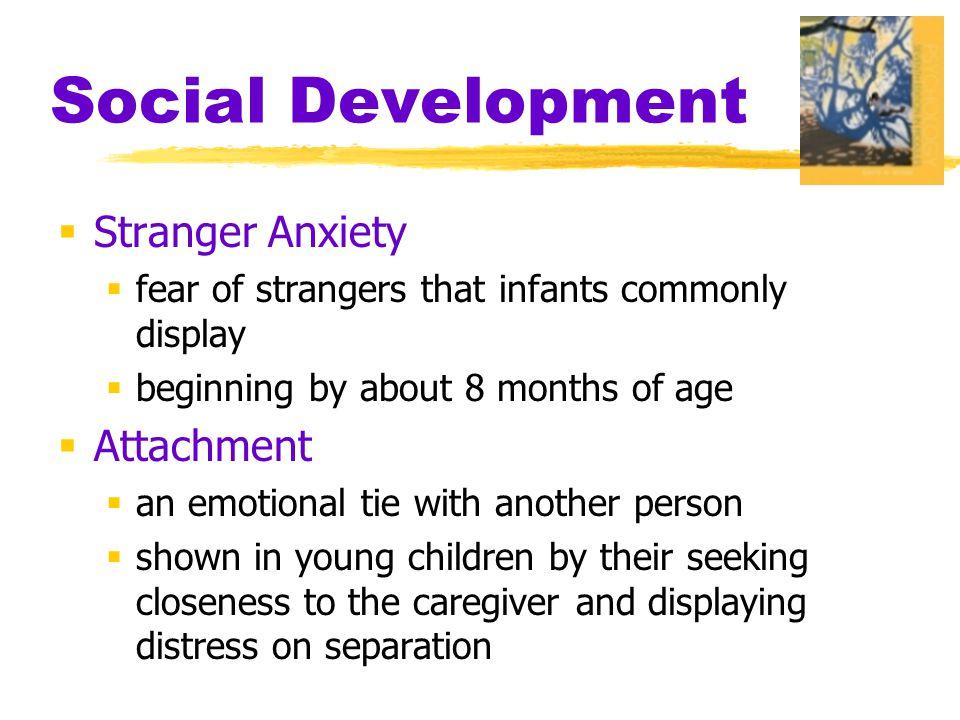 Social Development Stranger Anxiety Attachment