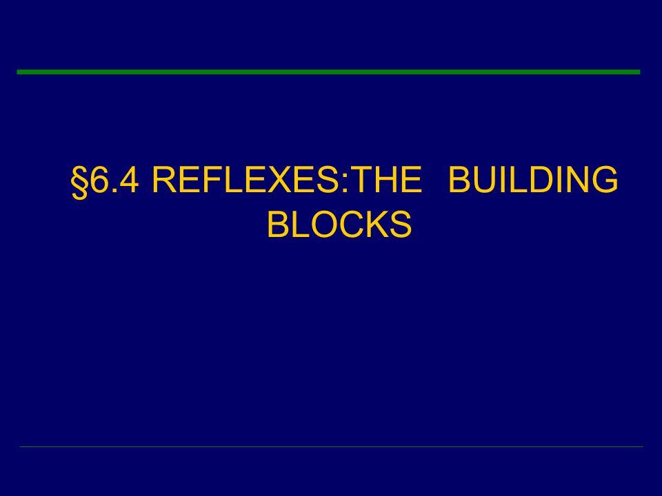 §6.4 REFLEXES:THE BUILDING BLOCKS