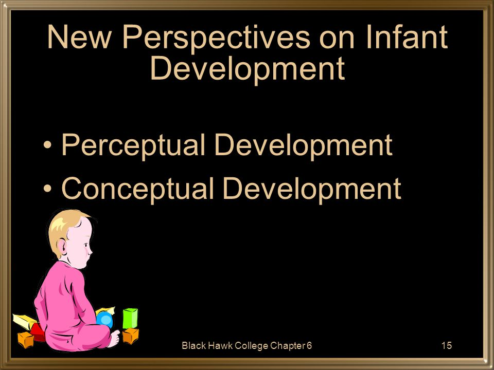 New Perspectives on Infant Development