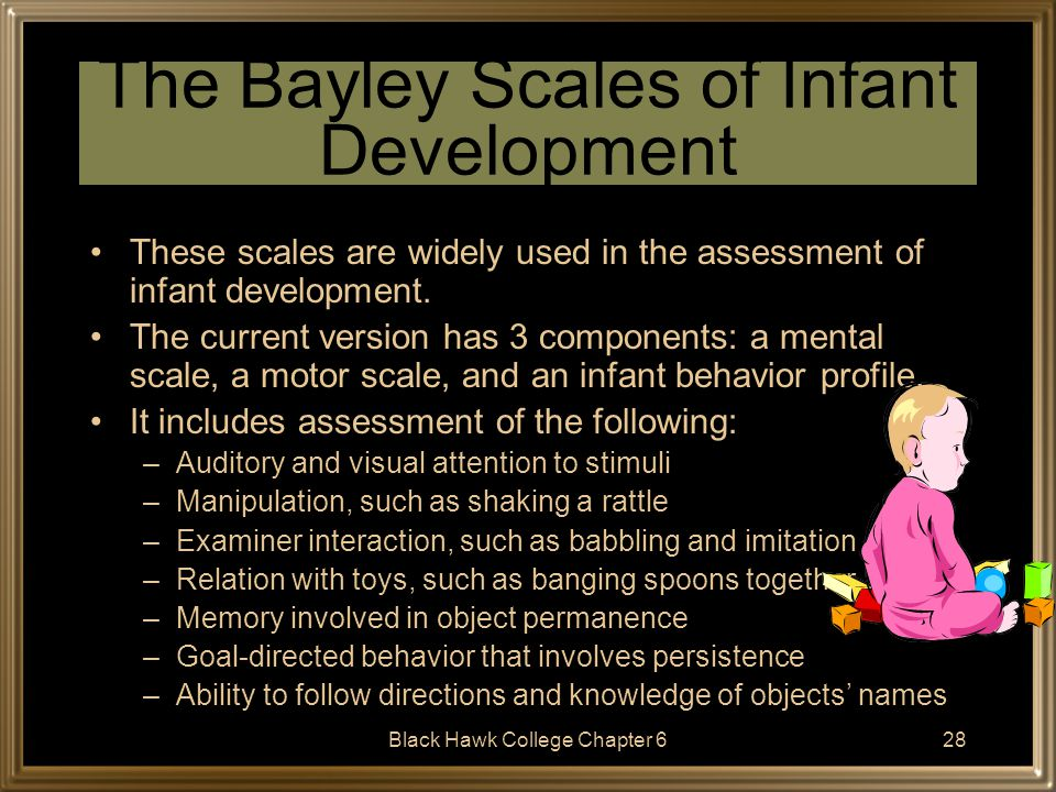 The Bayley Scales of Infant Development