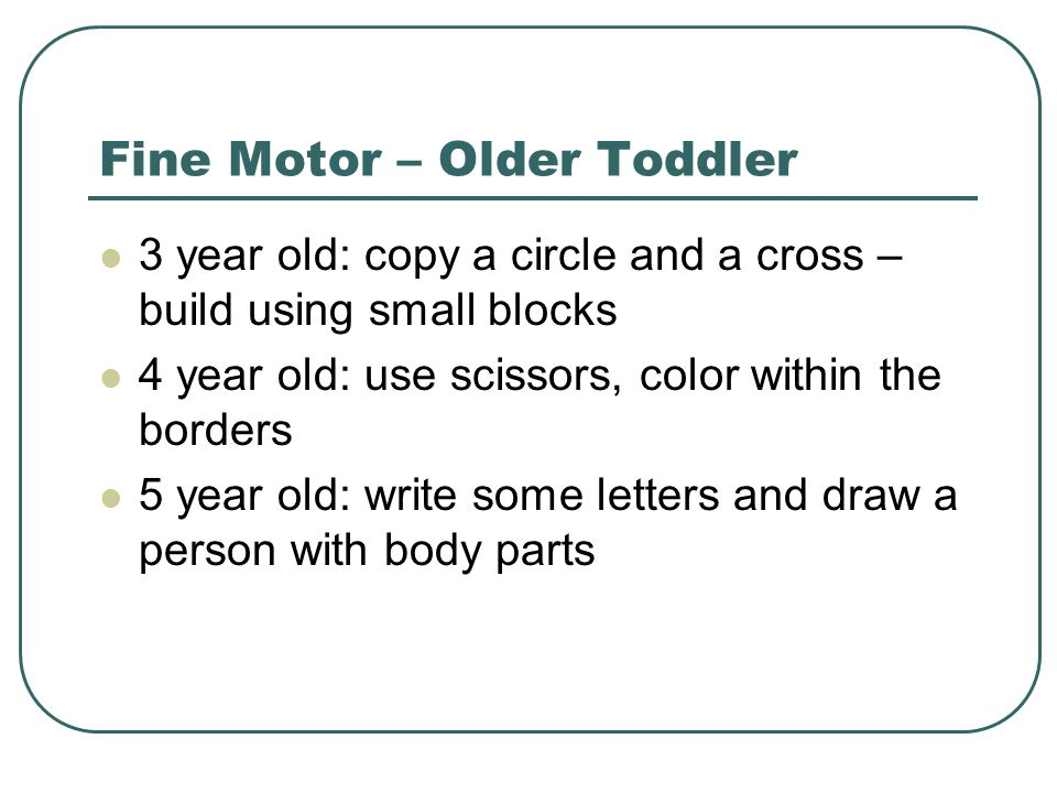 Fine Motor – Older Toddler