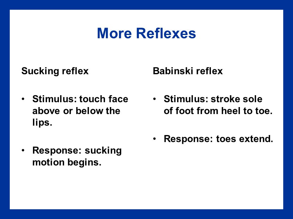 More Reflexes Sucking reflex