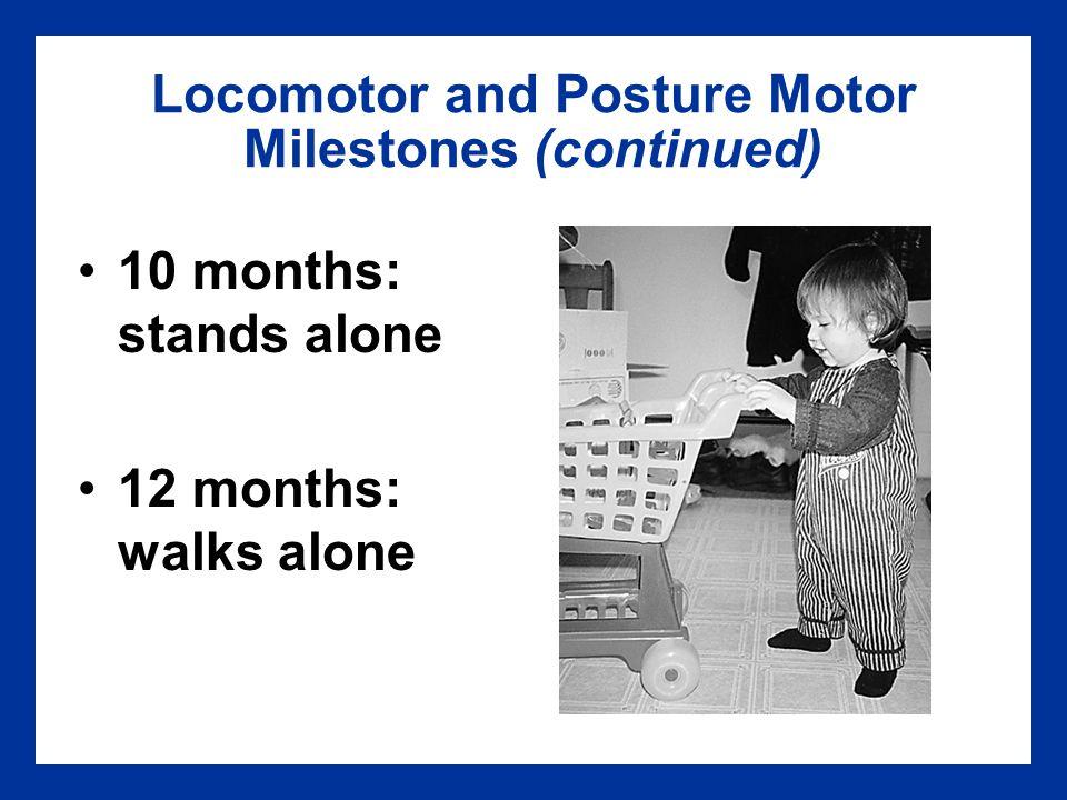 Locomotor and Posture Motor Milestones (continued)