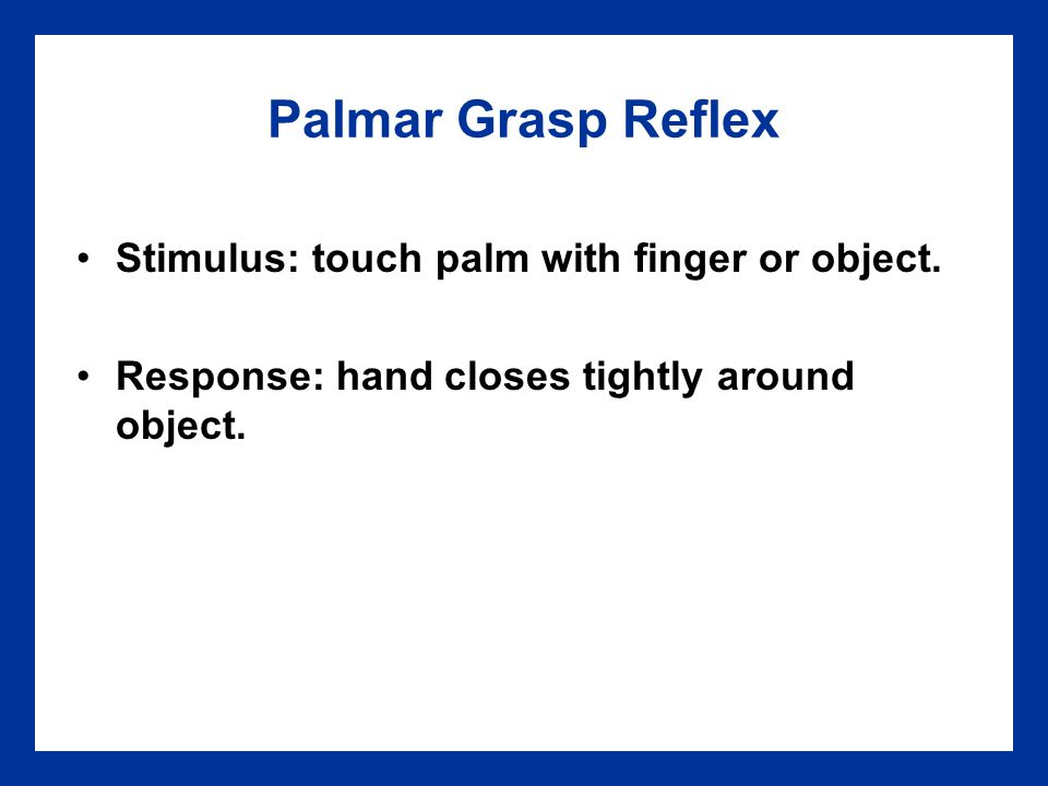 Palmar Grasp Reflex Stimulus: touch palm with finger or object.