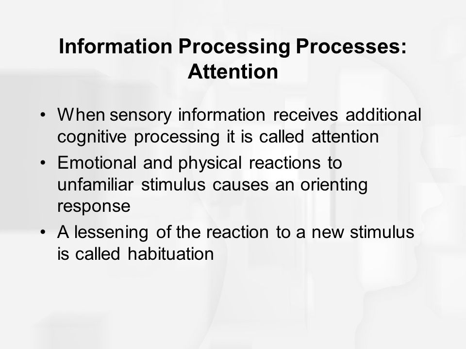 Information Processing Processes: Attention