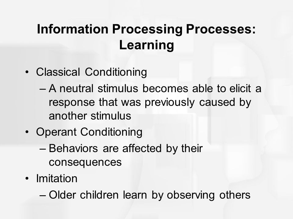 Information Processing Processes: Learning