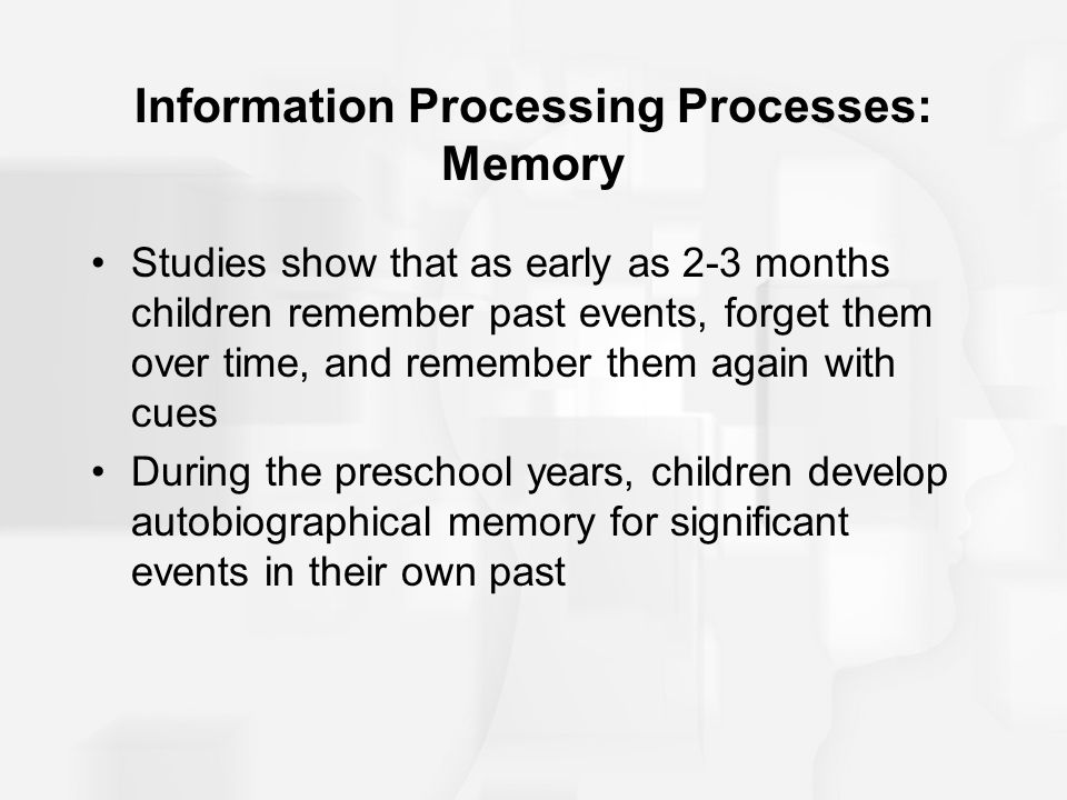 Information Processing Processes: Memory