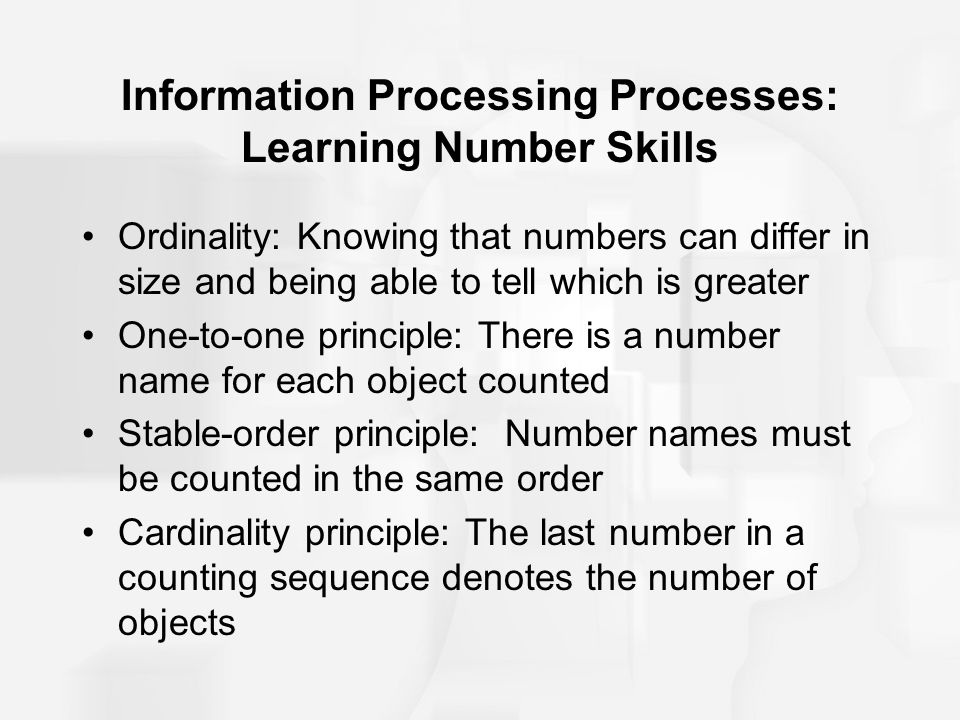Information Processing Processes: Learning Number Skills