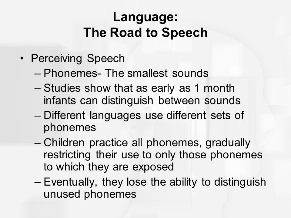 Language: The Road to Speech