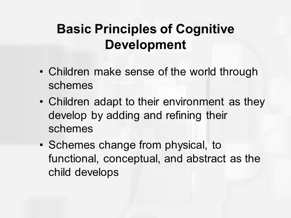 Basic Principles of Cognitive Development
