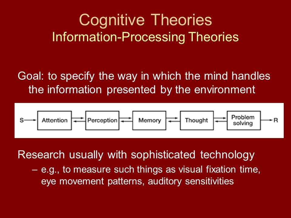 Cognitive Theories Information-Processing Theories