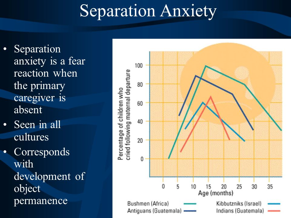 Separation Anxiety Separation anxiety is a fear reaction when the primary caregiver is absent. Seen in all cultures.