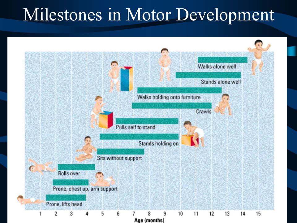 Milestones in Motor Development