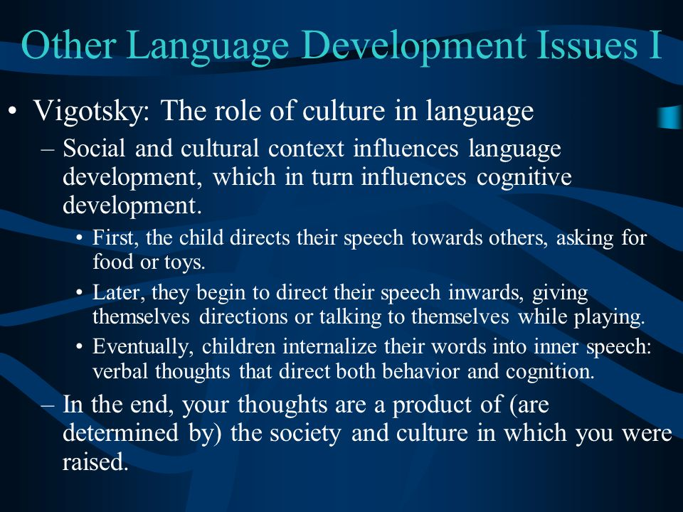 Other Language Development Issues I