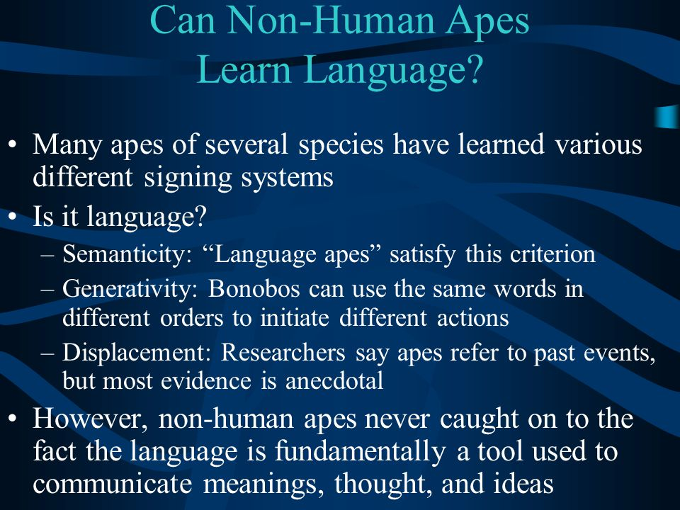Can Non-Human Apes Learn Language