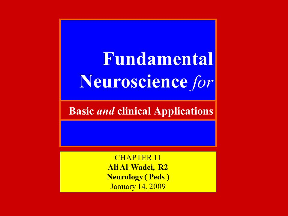 Fundamental Neuroscience for