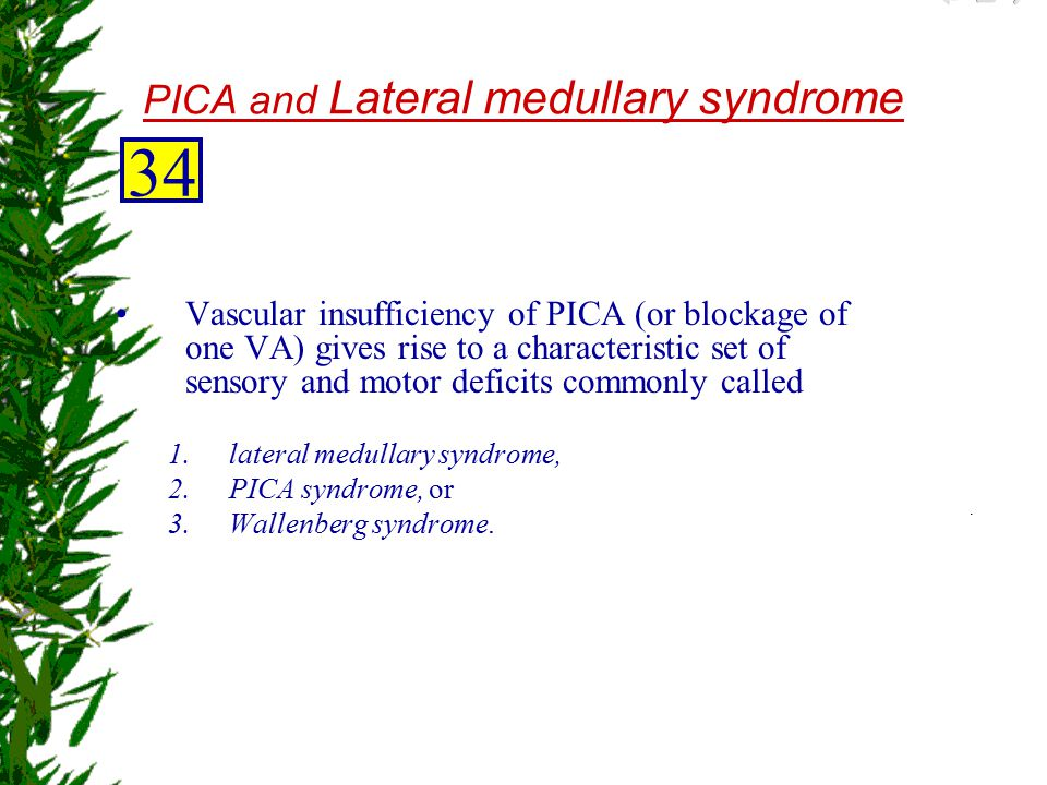 PICA and Lateral medullary syndrome