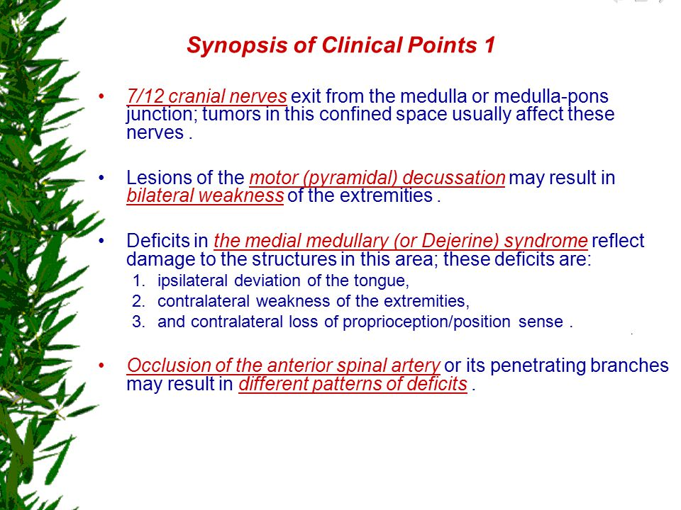 Synopsis of Clinical Points 1