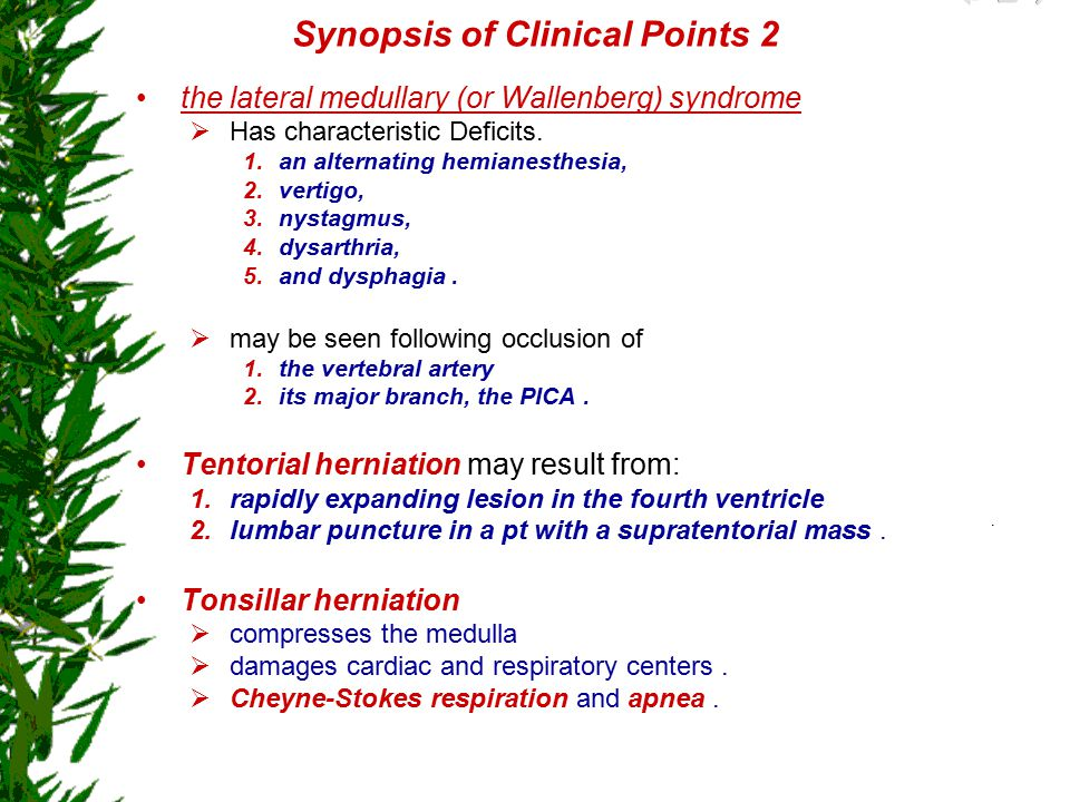 Synopsis of Clinical Points 2