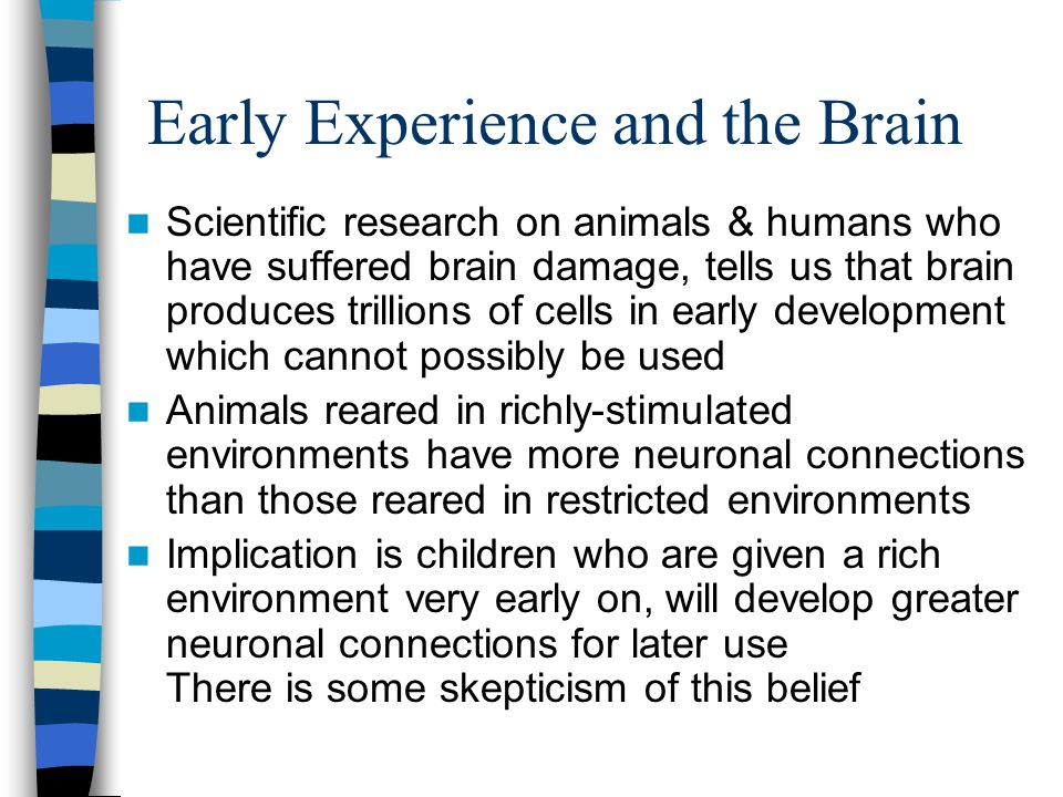 Early Experience and the Brain