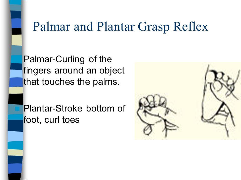 Palmar and Plantar Grasp Reflex