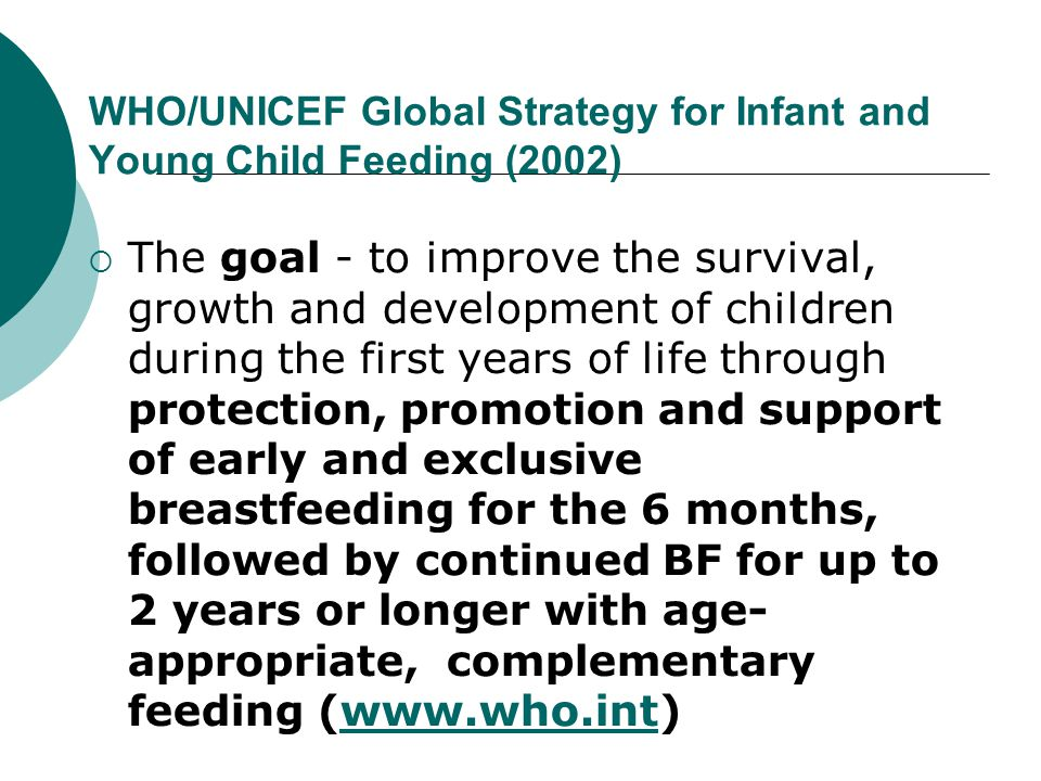 WHO/UNICEF Global Strategy for Infant and Young Child Feeding (2002)