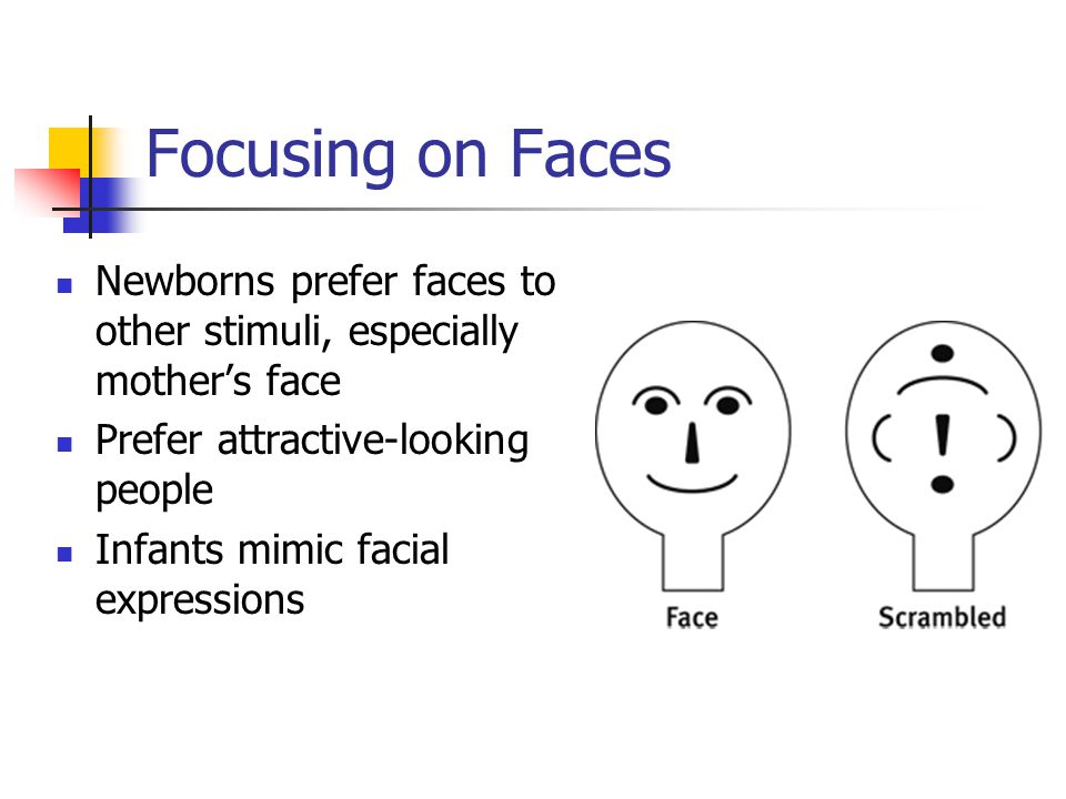 Focusing on Faces Newborns prefer faces to other stimuli, especially mother's face. Prefer attractive-looking people.