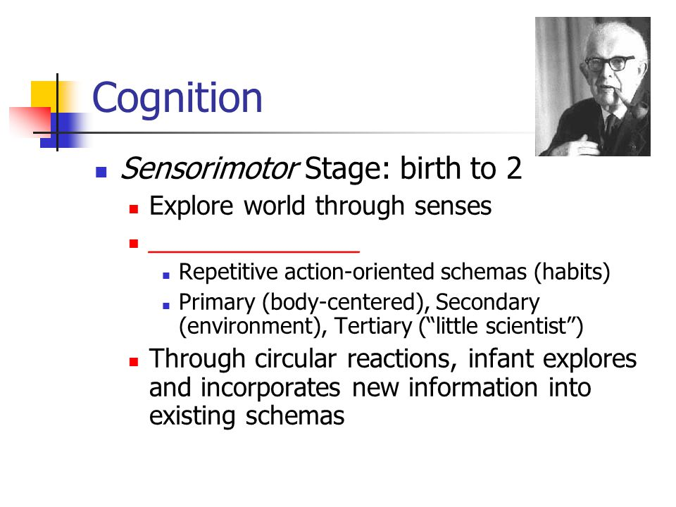 Cognition Sensorimotor Stage: birth to 2 Explore world through senses