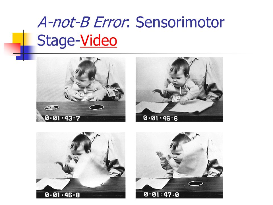 A-not-B Error: Sensorimotor Stage-Video