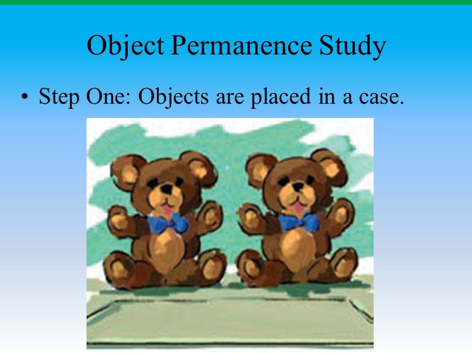 Object Permanence Study