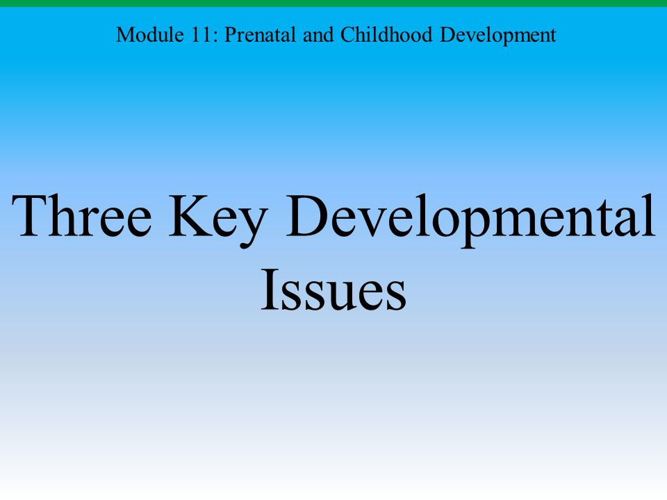 Three Key Developmental Issues