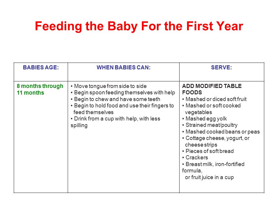 Feeding the Baby For the First Year
