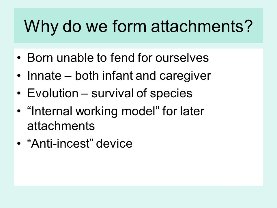Why do we form attachments