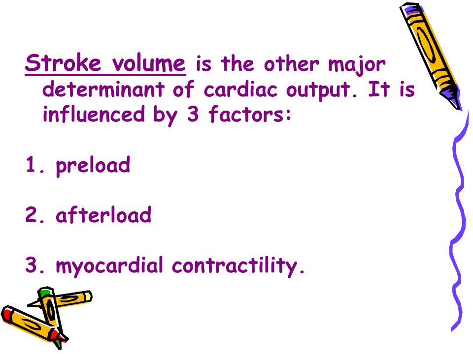 Stroke volume is the other major determinant of cardiac output