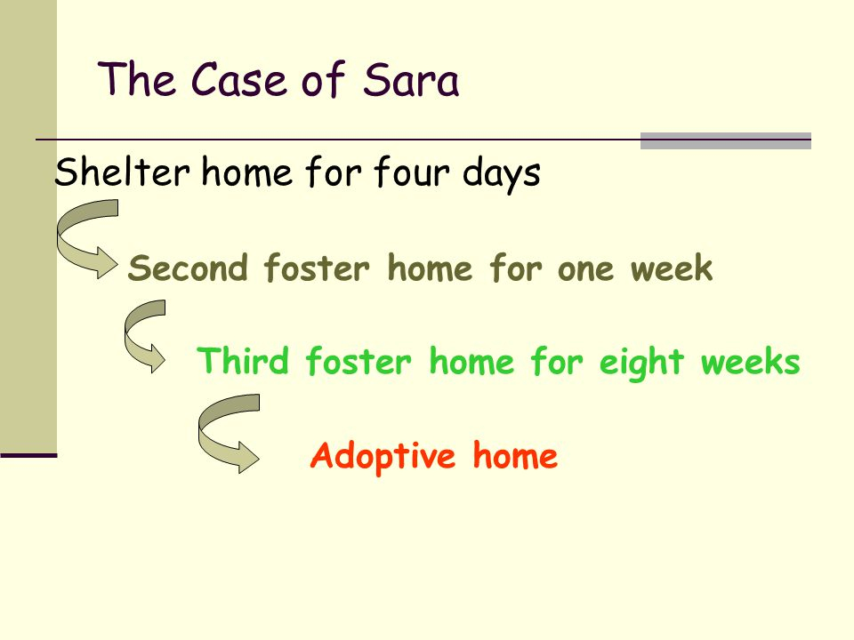 The Case of Sara Shelter home for four days