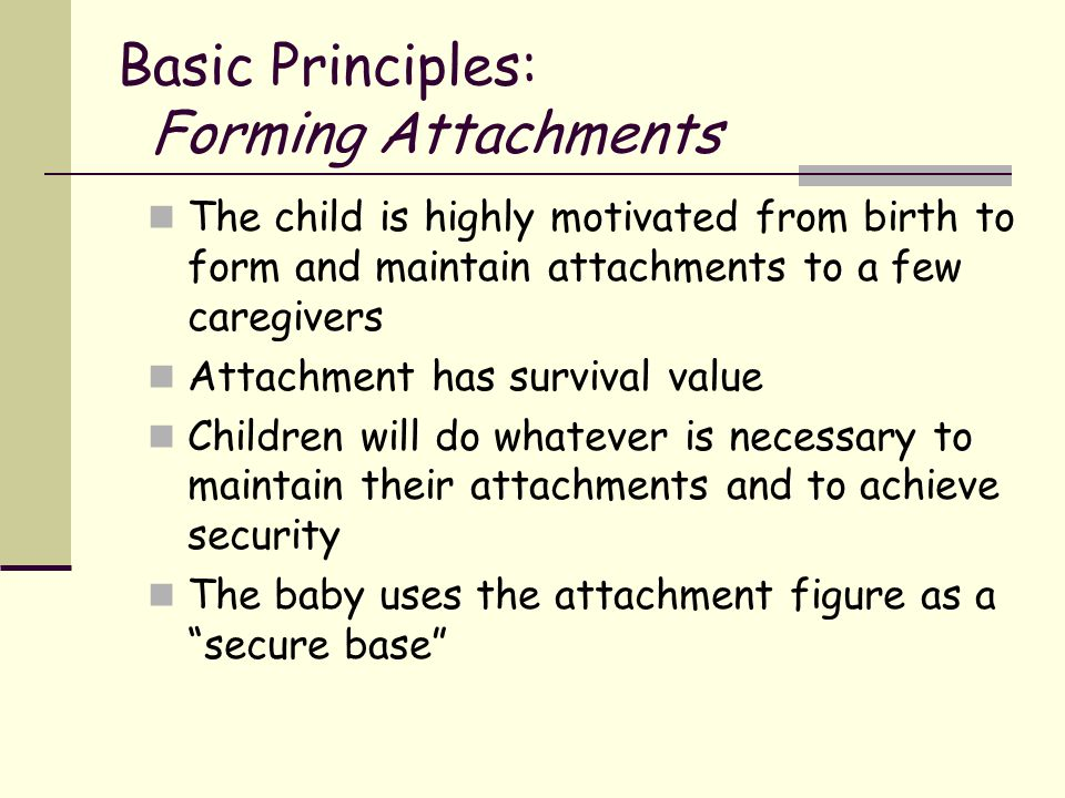 Basic Principles: Forming Attachments