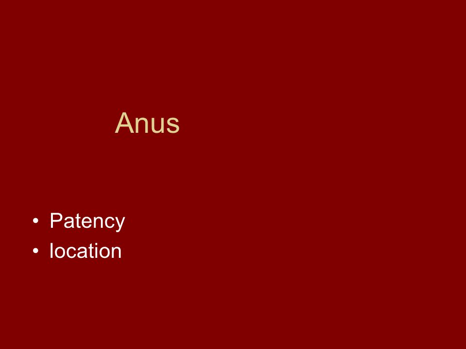 Anus Patency location