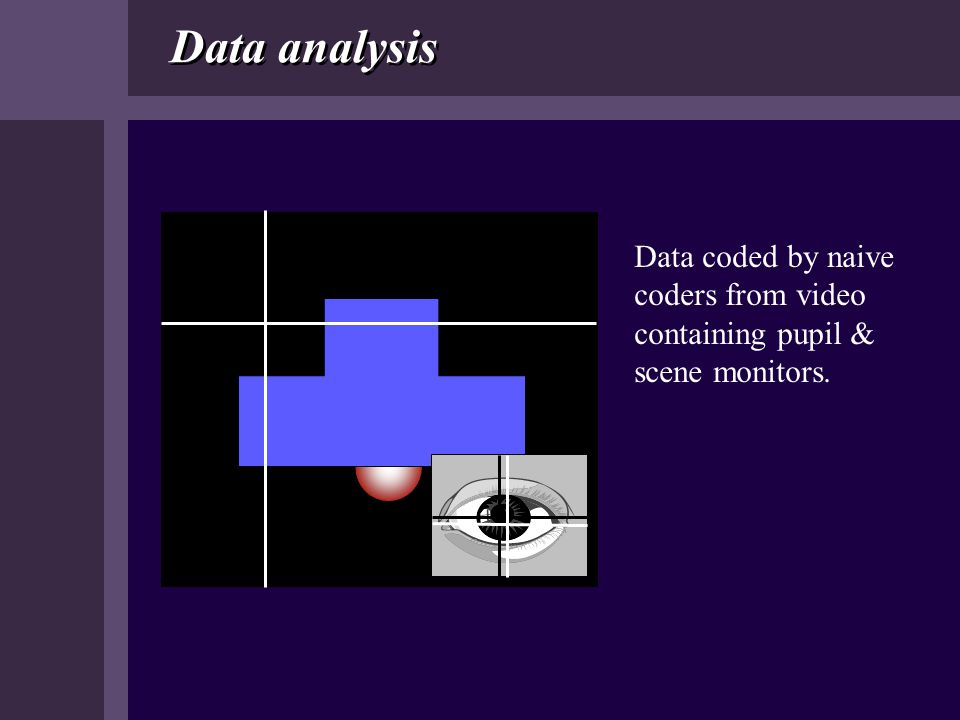 Data analysis Data coded by naive coders from video containing pupil & scene monitors.