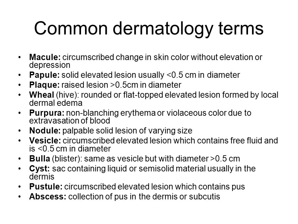 Common dermatology terms