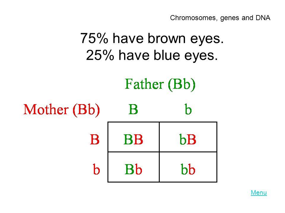 75% have brown eyes. 25% have blue eyes.