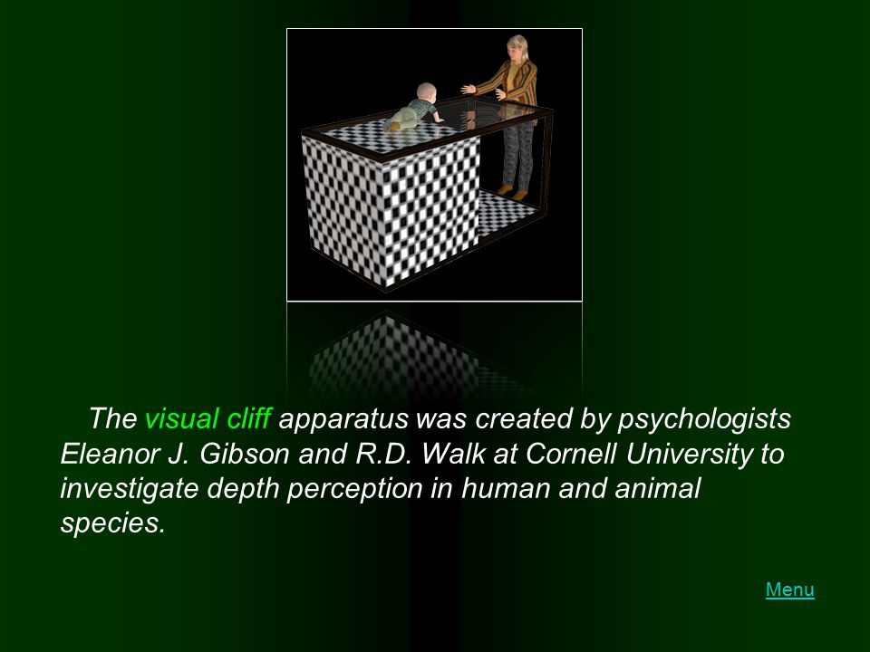 The visual cliff apparatus was created by psychologists Eleanor J