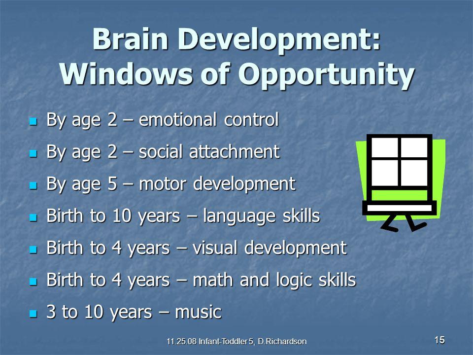 Brain Development: Windows of Opportunity