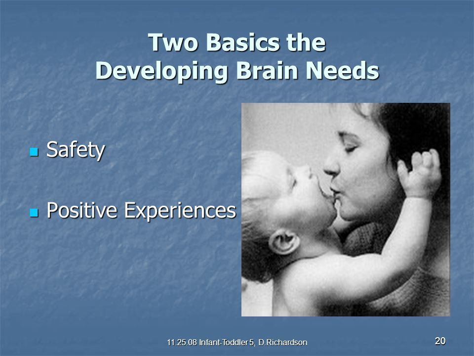 Two Basics the Developing Brain Needs