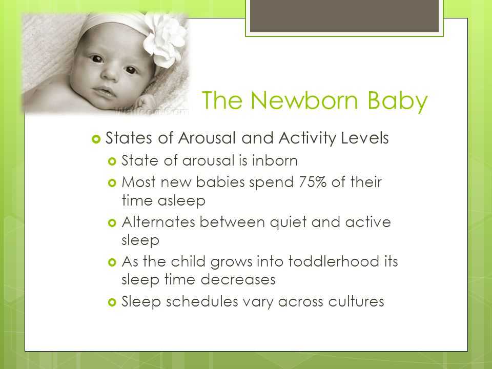 The Newborn Baby States of Arousal and Activity Levels