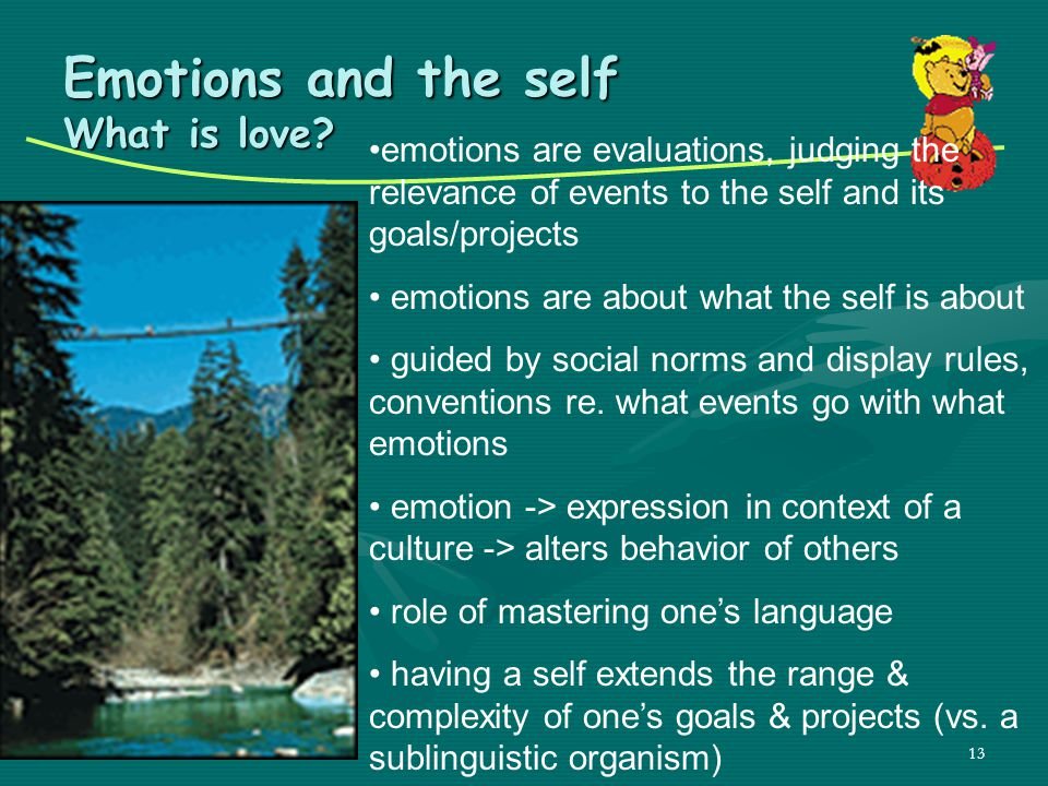 Emotions and the self What is love