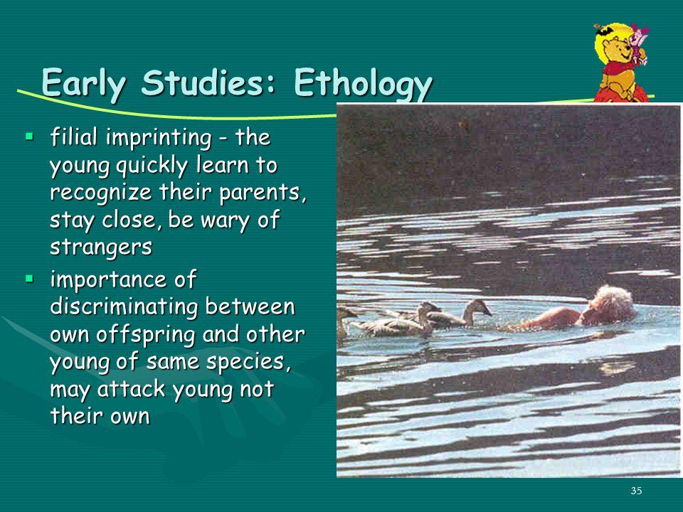 Early Studies: Ethology