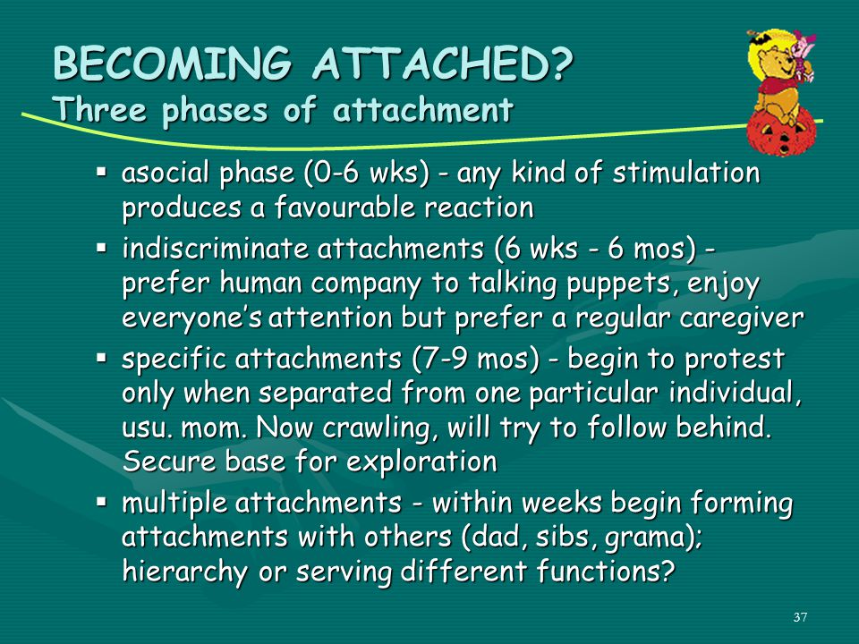 BECOMING ATTACHED Three phases of attachment